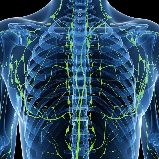 области поражения в клеточной лимфомой