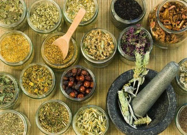 Лечение рака народными средствами: все методы и рецепты