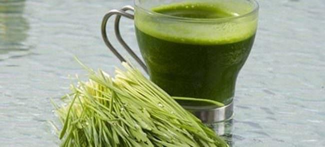 чашка с зеленым напитком из трав