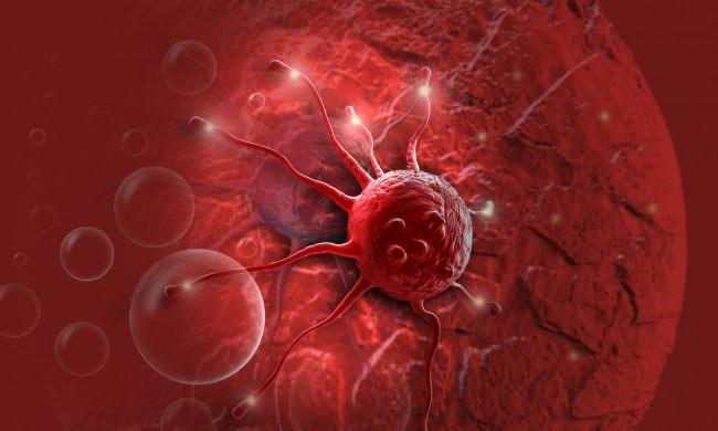 клетка рака желудка