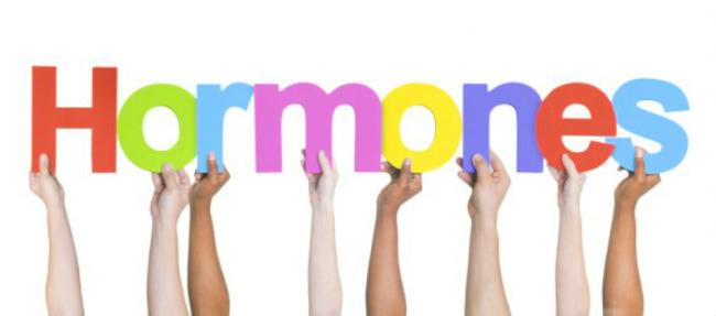 нормональная терапия