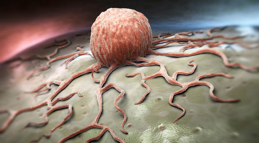 Сбой цикла месячных  Симптомы причины лечение