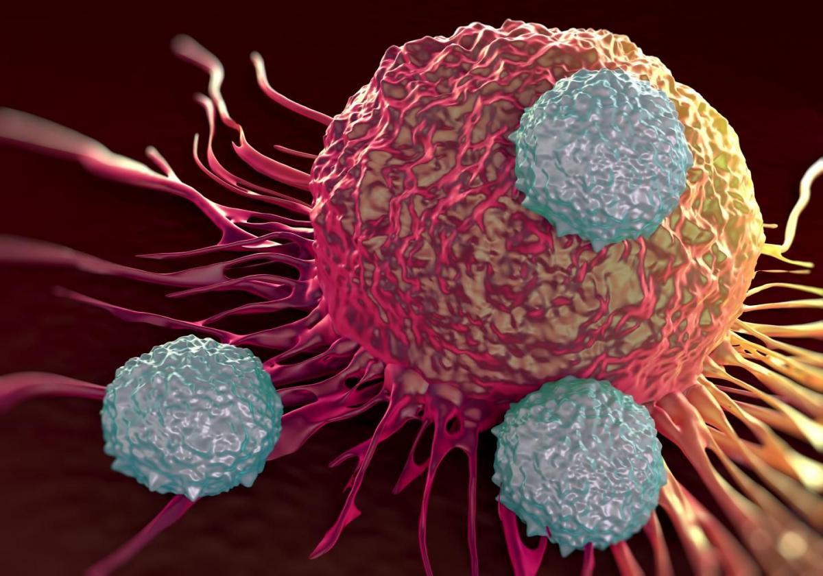 Блокирование раковых клеток
