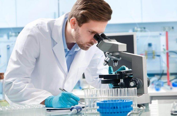 Гистологиеское исследование