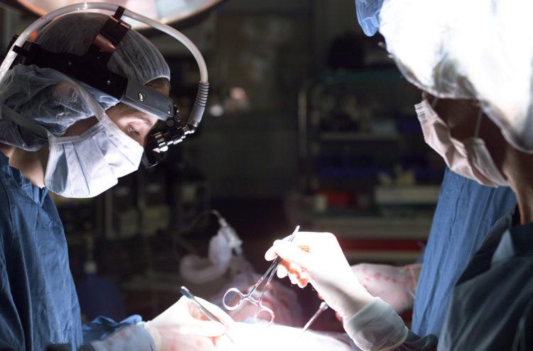 Трансплантация стволовых клеток